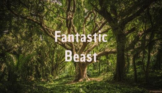 『ファンタスティック・ビーストと黒い魔法使いの誕生』感想|魔法生物を巡る旅を観たい!